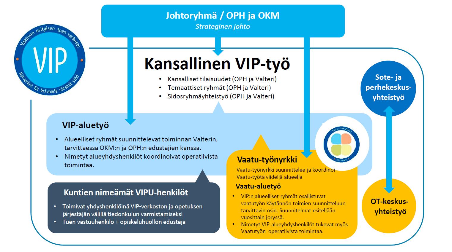 VIP-verkoston vastuut ja toiminta vakiinnuttamiskaudella 2021-2022 VIP-verkoston toimintaa johtaa johtoryhmä, jossa on edustus Opetushallituksesta sekä opetus- ja kulttuuriministeriöstä. Toiminnassa on kolme kokonaisuutta: kansallinen VIP-työ, VIP-aluetyö sekä Vaatu. Kansallista VIP-työtä ovat kansalliset tilaisuudet, temaattisten ryhmien työskentely sekä sidosryhmäyhteistyö. Näiden koordinoinnista vastaavat Opetushallitus sekä Oppimis- ja ohjauskeskus Valteri. VIP-aluetyössä alueelliset ryhmät suunnittelevat toiminnan Valterin sekä tarvittaessa OKM:n ja OPH:n edustajien kanssa. Operatiivista toimintaa koordinoivat nimetyt alueyhdyshenkilöt. VIP-verkoston ja opetuksen järjestäjien välisen tiedonkulun varmistamiseksi nimetään lisäksi niin kutsutut VIPU-henkilöt. VIPU-henkilöt ovat kunkin kunnan nimeämä tuen vastuuhenkilö ja opiskeluhuollon edustaja, jotka toimivat yhdyshenkilöinä. Vaatu-työnyrkki suunnittelee ja koordinoi Vaatu-työtä viidellä alueella. Vaatu-aluetyössä VIP:n alueelliset ryhmät osallistuvat vaatutyön käytännön toimien suunnitteluun tarvittavin osin. Suunnitelmat esitellään vuosittain joryssä. Nimetyt VIP-alueyhdyshenkilöt tukevat myös Vaatutyön operatiivista toimintaa. VIP-verkosto tekee yhteistyötä sote- ja perhekeskusten sekä OT-keskusten kanssa.